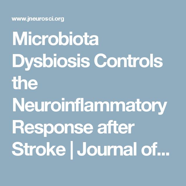 dysbiosis journal le papillomavirus humain (hpv)