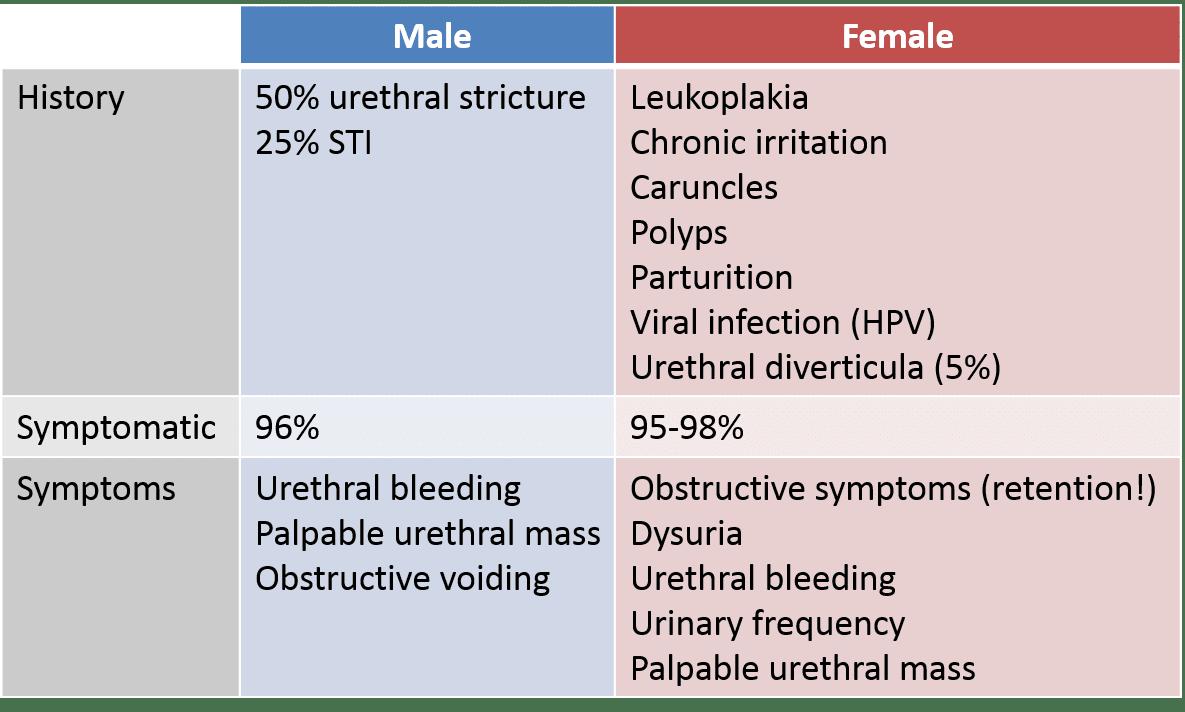 Hpv urethra symptoms, Hpv urethra treatment