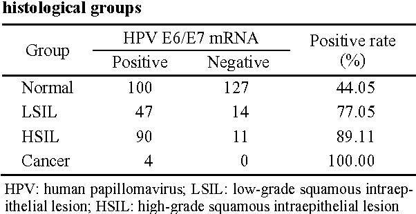 il papilloma virus e grave