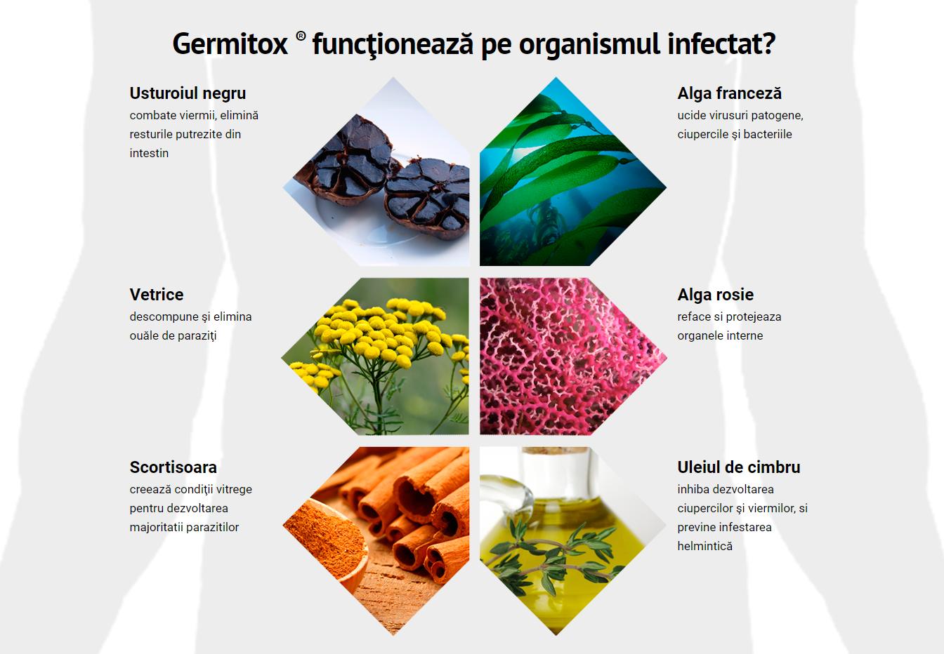 cum de a proteja împotriva paraziților intestinali papiloma virus humano verrugas genitales