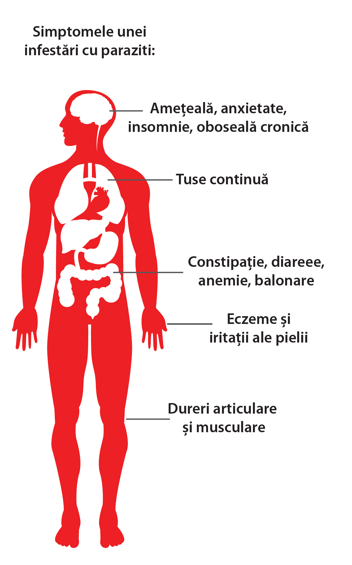 paraziti biliari papilloma virus tumore