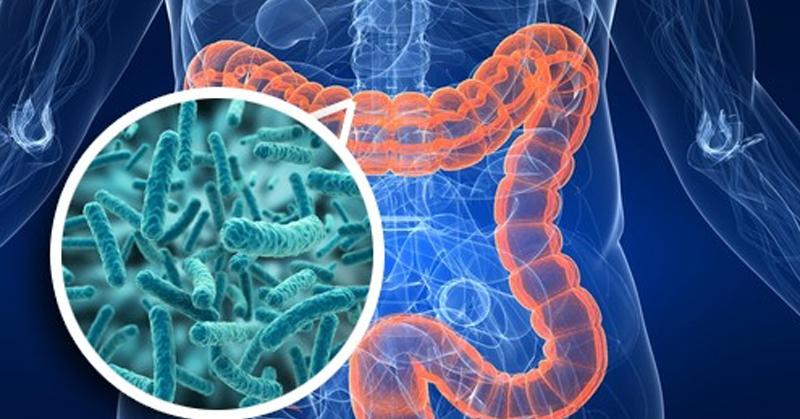 virusi intestinali