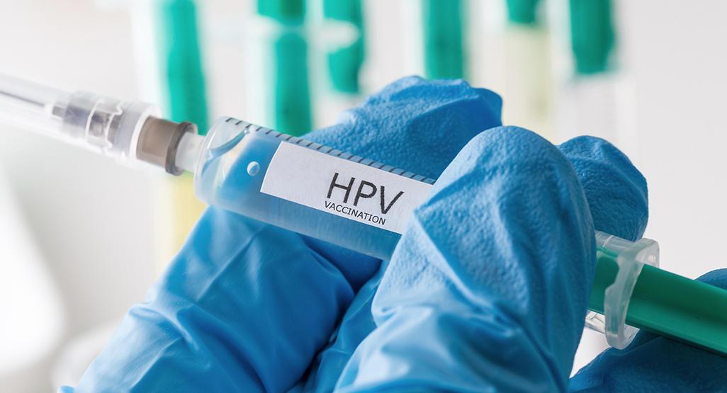 human papillomavirus during pregnancy treatment