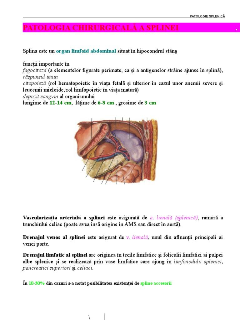 cancer de plamani simptome si tratament