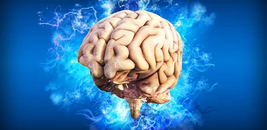 cauze cancer la creier ce este parazitoza digestiva