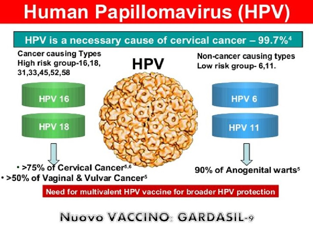 papilloma virus vaccini