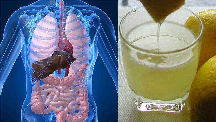 detoxifierea plamanilor cancer orofaringe estagios