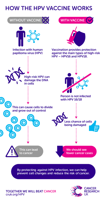 cervical cancer after hpv vaccine