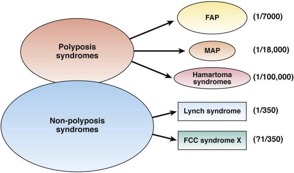 colon cancer genetic factors tratament viermisori copii