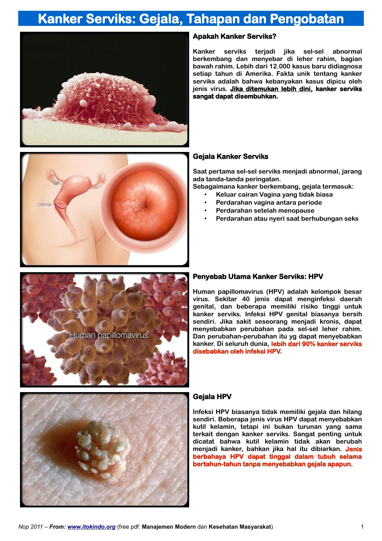 hpv virus adalah