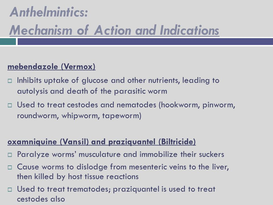 anthelmintic medication