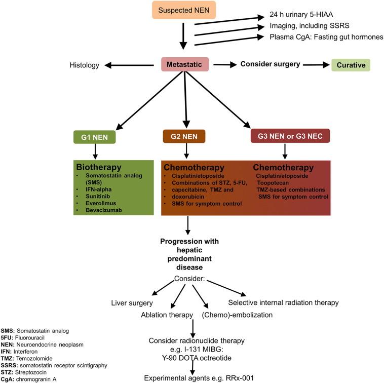 neuroendocrine cancer and agent orange toxin binders