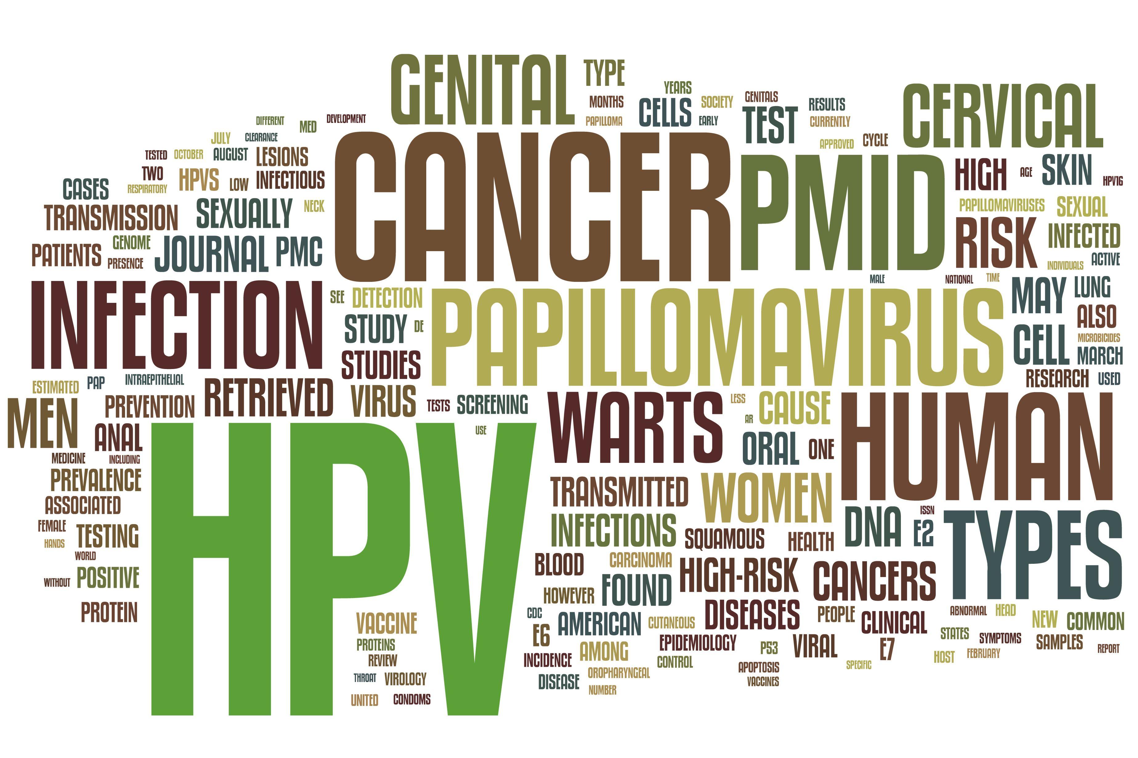 papilloma virus e ano hpv wart biopsy