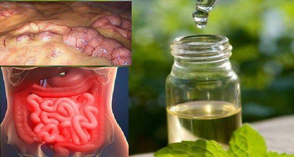 ce sunt toxinele meniu detoxifiere colon