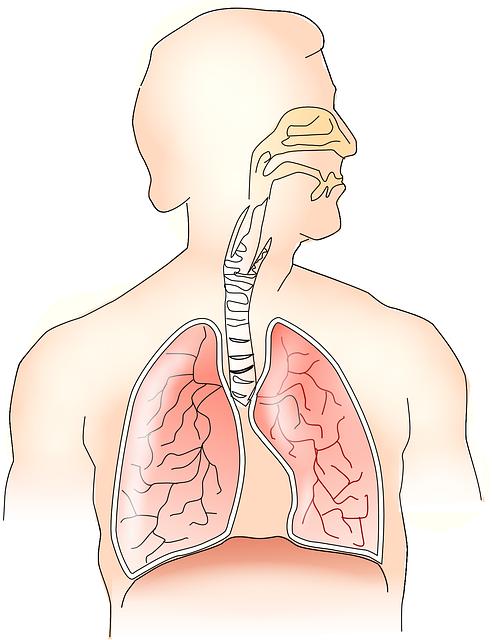 cancer pulmonar biodescodificacion usturoiul pt viermi intestinali