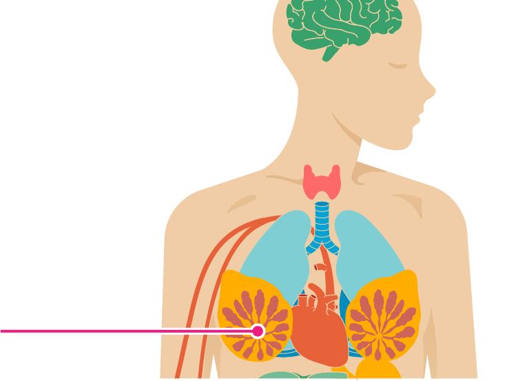 sintomi virus del papilloma umano