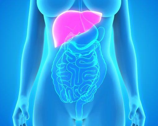 cancer pancreas et foie oxiuri tratament tpu