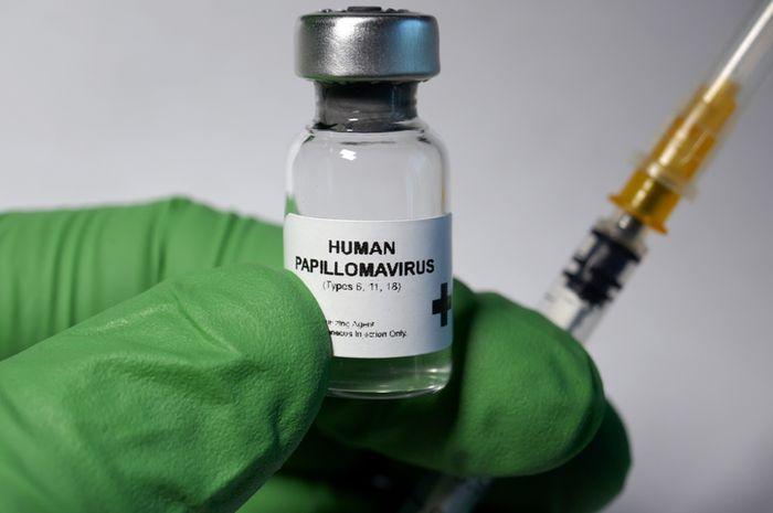 obat human papillomavirus anemie megaloblastica tratament