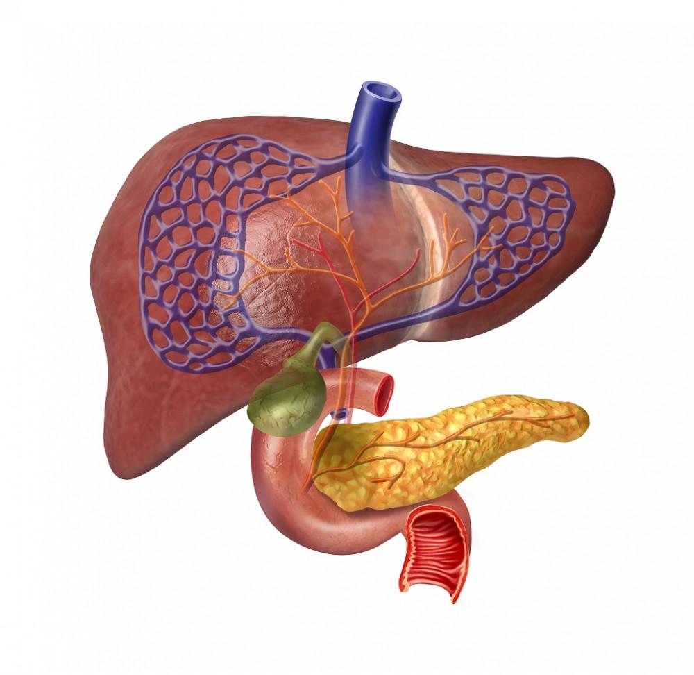 cancer pancreas biopsie