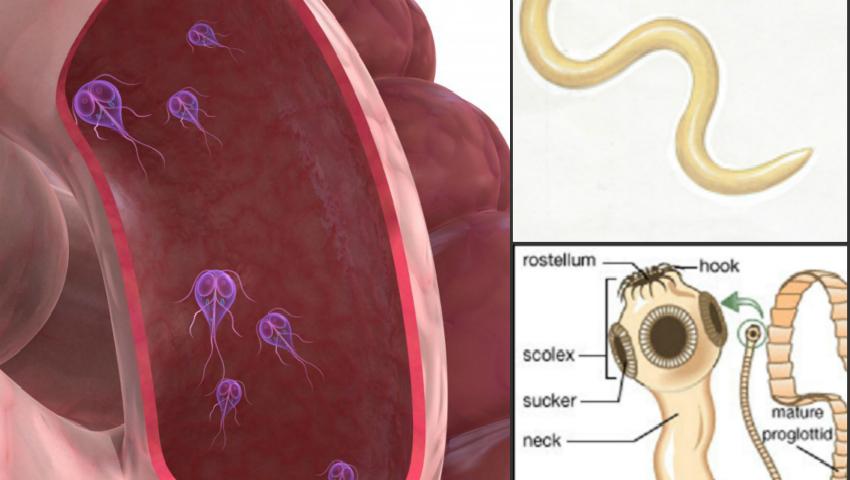 simptome ca ai paraziti intestinali