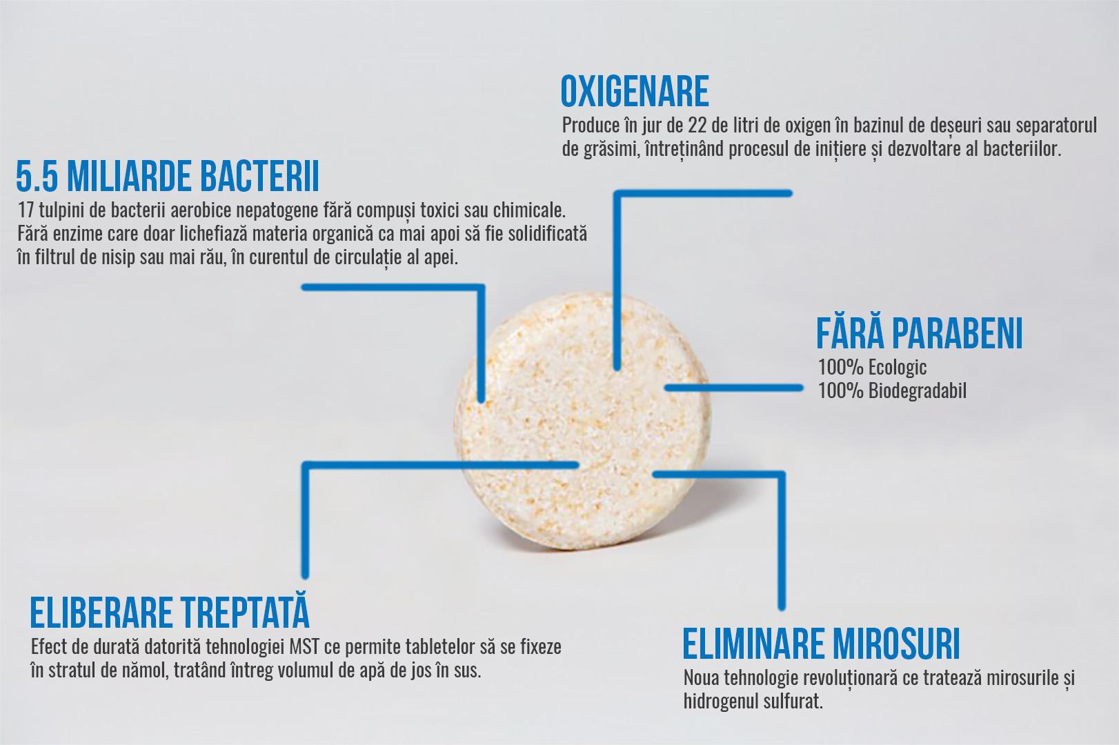 bacterii wc