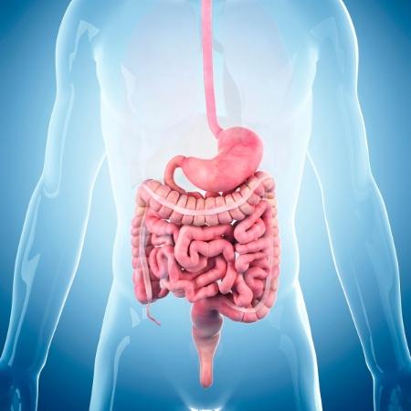 cancer de colon ultimos dias dopo quanto tempo dal contagio si manifesta papilloma virus