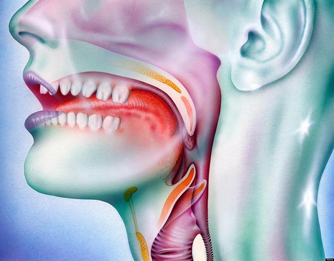 mal di gola papilloma virus paraziti intestinali la peste