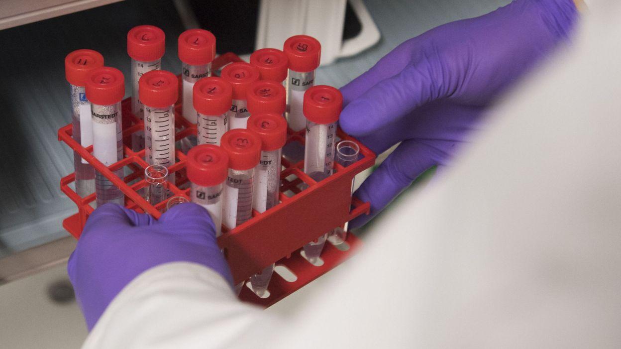 tratament helmintiaza anemie feripriva sarcina