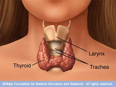 papillary thyroid cancer weight loss