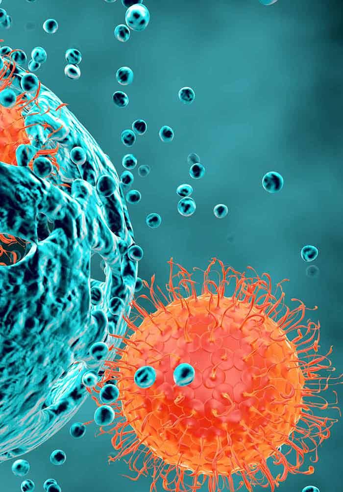 papiloma pie cancer cancerul gastric lucrare de diploma