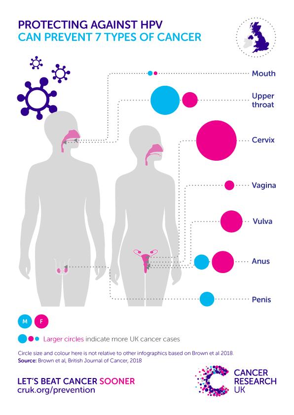 papiloma principales caracteristicas papillomavirus homme diagnostic