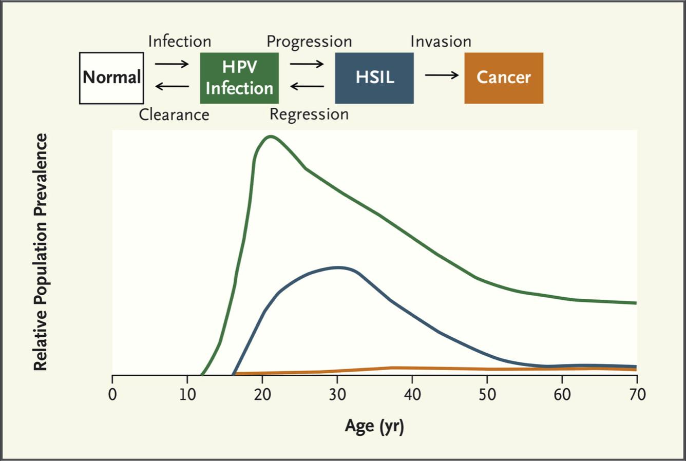 hpv virus diagnostic que enfermedades causan los oxiuros