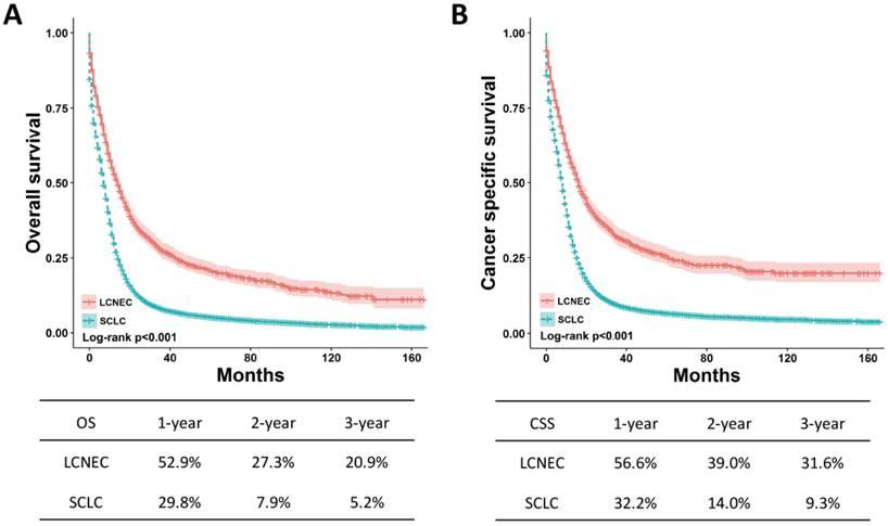neuroendocrine cancer survival hpv e futura gravidanza