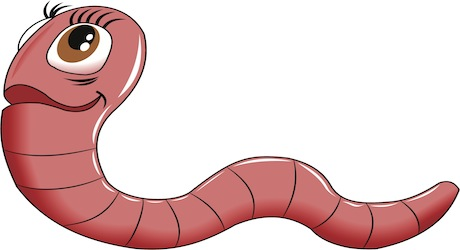 oxiuros parasitos intestinales papilloma virus uomo come diagnosticarlo