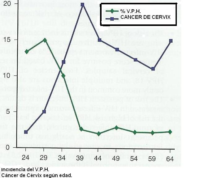 papiloma virus x pcr 35 cepas