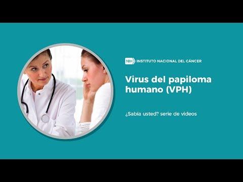 virus papiloma humano relacion
