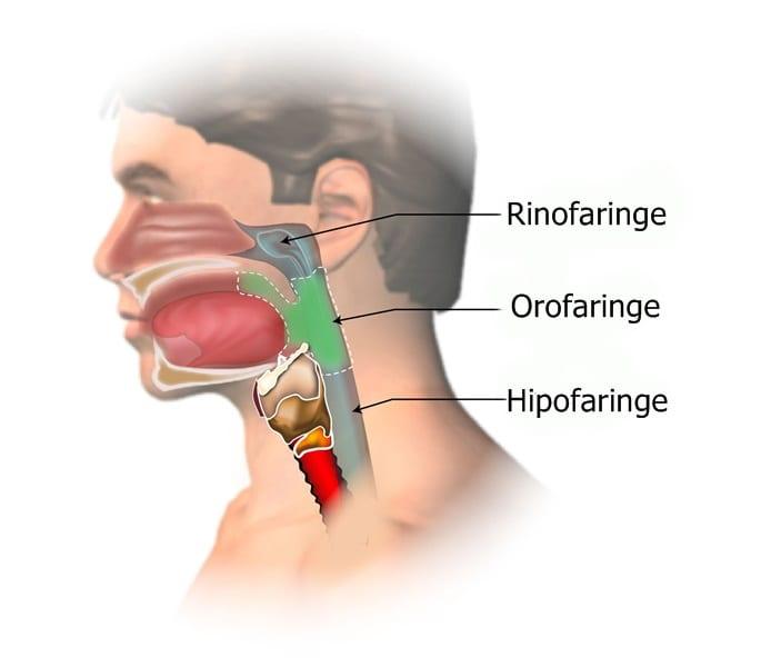cancer laringian stadiu 4