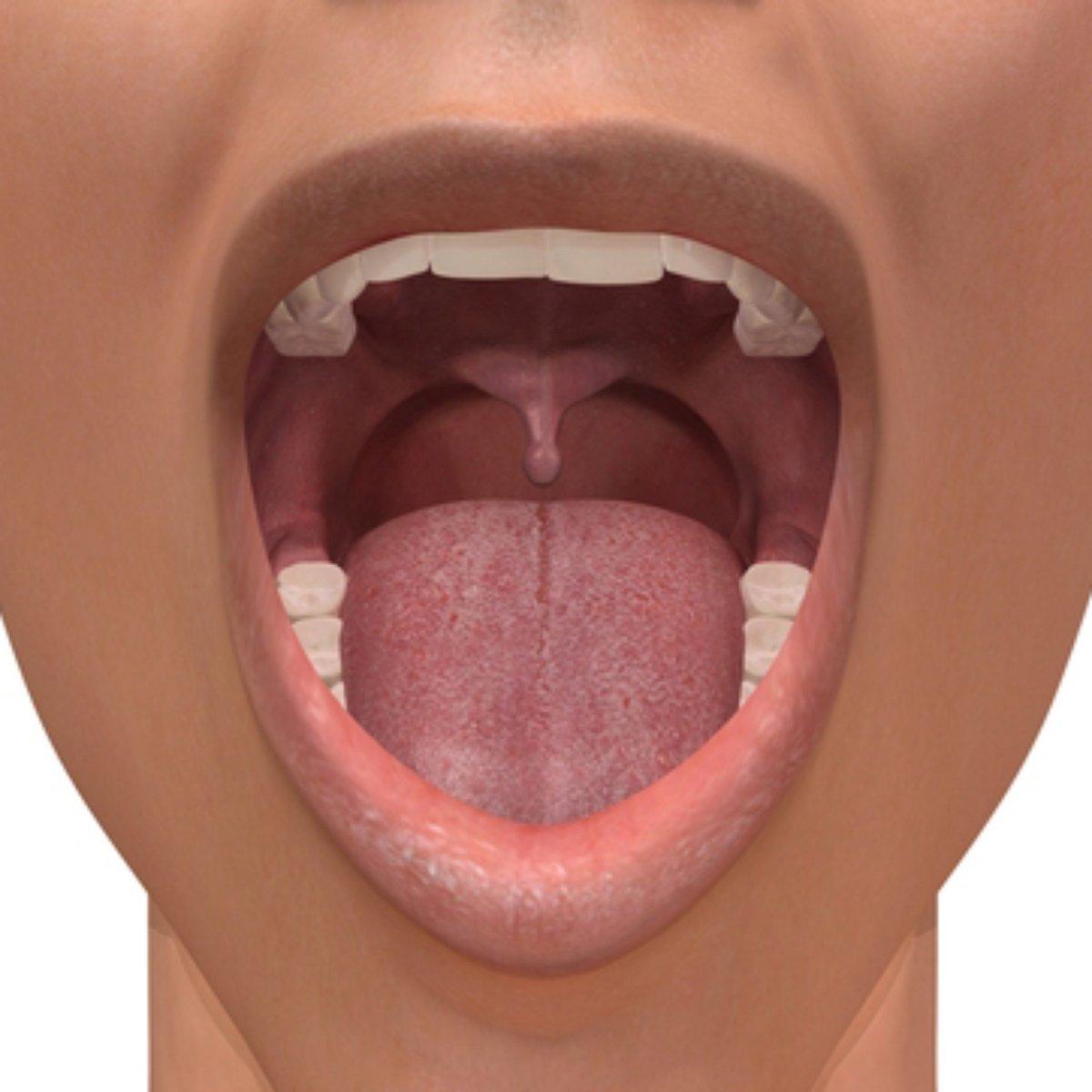 cancer na boca por hpv papiloma humano contagio por jabon