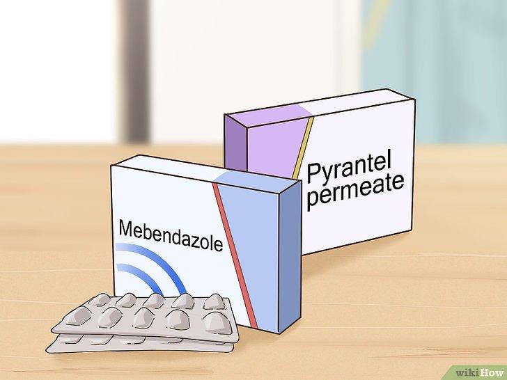 oxiuriase tratamento albendazol detoxifierea colonului cu tarate de grau