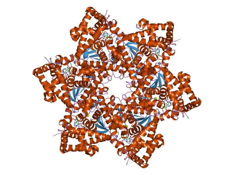 virus papiloma humano tipo 18 tratamiento