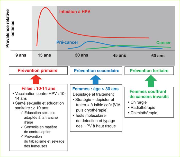 human papilloma virus et cancer du col