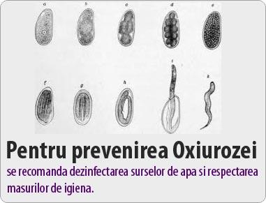 oxiuroza simptome copii condyloma acuminata icd 9