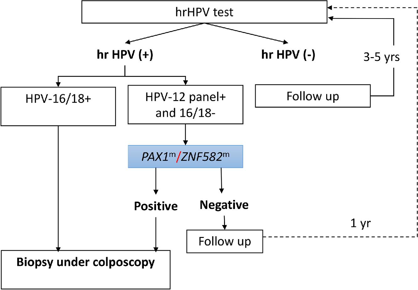 il papilloma virus e una malattia venerea