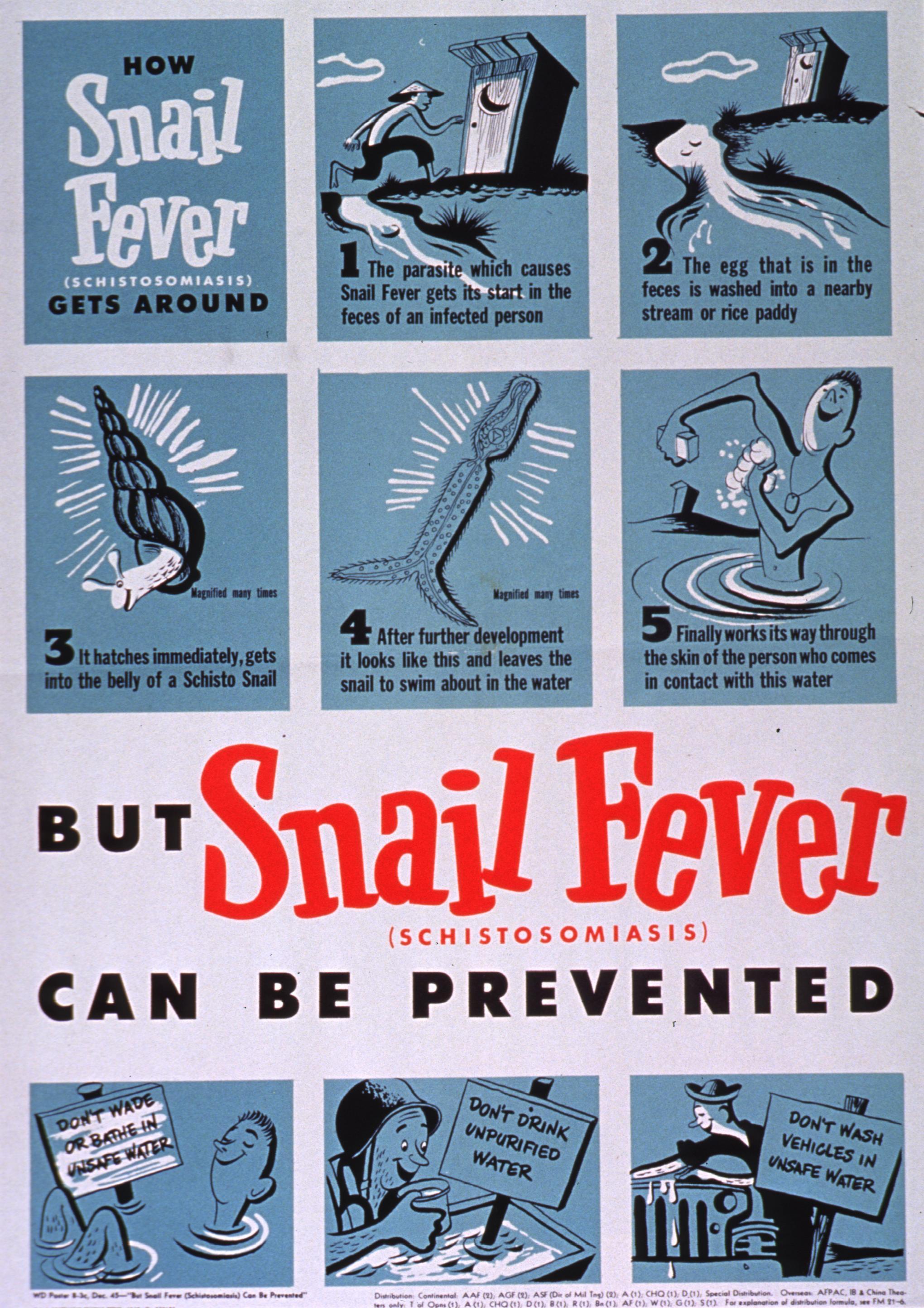 papilloma virus effetti sulluomo uterine cancer bladder symptoms