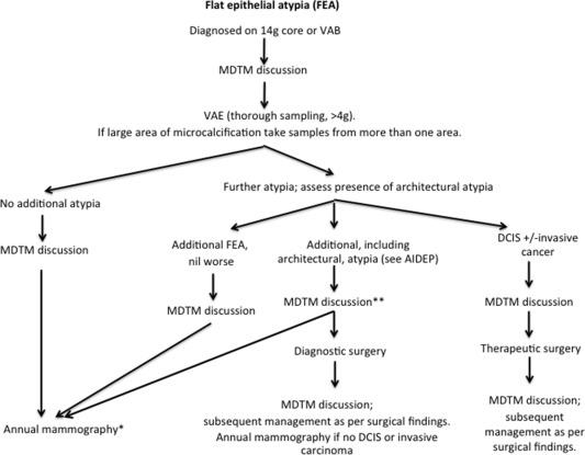 intraductal papilloma nhs cancer pulmonar t4