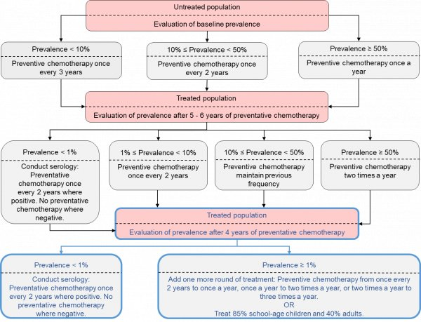 schistosomiasis questions
