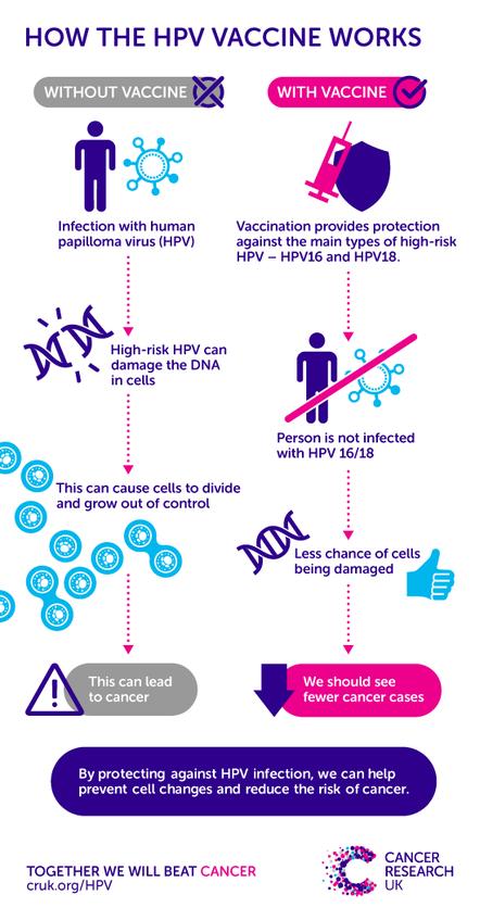 cervical cancer after hpv vaccine