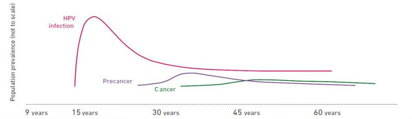 mirena hpv cervical cancer