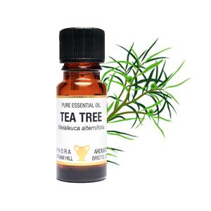 papillomavirus tea tree