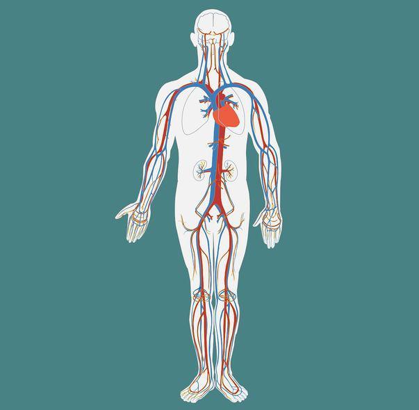 cancer limfatic stadiul 3 fier pt anemie